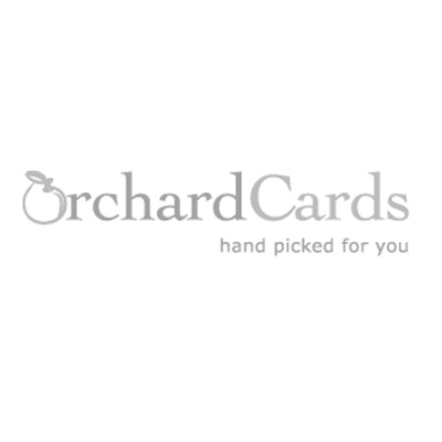 XCP-A253 - GORGEOUS 3D stand-up 24-door advent calendar illustrated with a beautiful black lab holding a bag of christmas presents.  With glitter and a gift envelope.
